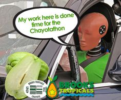 Recognize that fruit? We market it as chayote. You may know it by another name. It's in season. Click for new recipe ideas.