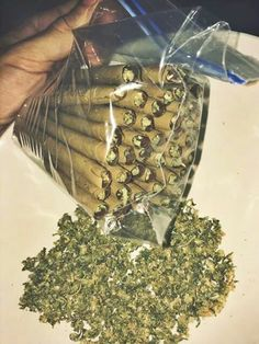 BUY INDOOR GROWN SATIVA A++ MARIJUANA (WEED/CANNABIS) +1(512-829-8931 Master Kush Grade A is is a hybrid strain with mix of og kush and afghan hash. Its a good day to start day hectic day with cause it kills stress and nervousness,100% relaxed and less sleepy. More info at..(http://medimarijuana.co.nf)  Order Now!!!  2LBS...... $3000  3LBS…. $4500  6LBS… $9,000  NOTE: 2LBs MINIMUM