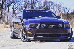Check out one of our newest sponsored drivers! @jaygray757 and his sick #lavared #coyote #mustang #s197 #ford #automafiaracingsponsored #partspassionperformance #jointhefamily