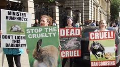 Petition update · Actors and entertainers join call for ban on cruel hare coursing! · Change.org