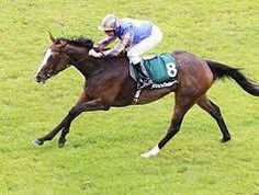 Misty For Me(2008)(Filly) Galileo- Butterfly Cove By Storm Cat. 3x4 To Northern Dancer, 4x3 To Mr Prospector, 5x5 To Native Dancer & Lalun. 11 Starts 5 Wins 1 Second 2 Thirds. $1,124,364. Won Irish 1000 Guineas(Ire-1), Pretty Polly S(Ire-1), Morglave Stud S(Ire-1), Prix Marcel Brossac S(Fr-1), 2nd Debutante S(Ire-2), 3rd BC Filly & Mare Turf(US-1), Matron S(Ire-1). Dam Of Roly Poly(3 YO Of 2017).