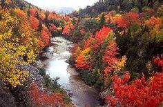 .New Brunswick