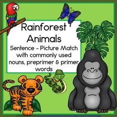 Students will be engaged in reading sight words with Rainforest Animals Sentence Picture Match. There are 12 sentences and pictures to match, featuring an anaconda, leaf cutter ant, gorilla, blue morpho butterfly, orangutan, panda, macaw, toucan, piranha, tiger and a red eyed tree frog. This packet has everything you need for a complete literacy center, including 2 vocabulary posters, 2 follow up worksheets, a leveled list of words used, and directions. TpT $ Rainforest Activities, Rainforest Animals, Morpho Butterfly, Blue Morpho, Sight Word Sentences, Sight Words, Kindergarten Themes, Classroom Activities, Reading Centers