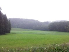 Green view landscaping #Bayern