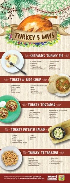 turkey 5 ways infographic