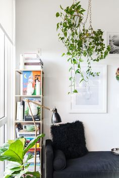 English Ivy Care Plant - How to Grow & Maintain English Ivies   Apartment Therapy Decoration Ikea, Brooklyn Apartment, Dream Apartment, Brooklyn House, Apartment Kitchen, Apartment Interior, Apartment Design, Easy Plants To Grow, Living Vintage