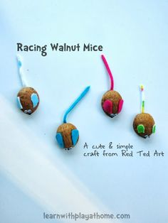 Learn with Play at home: Racing Walnut Mice. Kids Craft from Red Ted Art