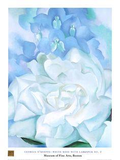 White Rose W/ Lakspur No.2 by Georgia O'Keeffe
