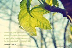 """""""Comme un arbre planté au bord de l'eau, il donne ses fruits au bon moment, et ses feuilles restent toujours vertes. Cet homme réussit tout ce qu'il fait."""" Psaume 1:3 (PDV) #Bible, #psaume"""