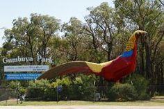 The Big Pheasant - Gumbuya Park - Victoria Wildlife Tourism, Fun Activities For Kids, Pheasant, Fun Ideas, Victoria, Tours, Park, Big, Children