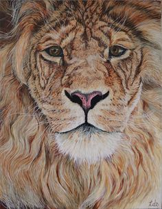 Lion (Peinture),  2x65x50 cm par Tracy De Sousa Peinture à l'acrylique sur chassis entoilé en lin et de format 65x50cm et d'épaisseur 2cm. Titré: 'Lion' il n'existe qu'un seul exemplaire, fais main, signé et vernis. Certificat d'authenticité à l'appuie. Si vous souhaitez voir l'avancé de la toile: 2014/07/rohaaaar-fait-le-roi-de-la-jungle.html