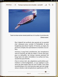 "ebook created by Audrey Keszek ""Tortues Marines de la Caraïbe"" - Laurent Louis-Jean - SCITEP #epub #livrenumérique #ebook"