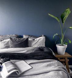 In diesem Schlafzimmer sind sanfte Träume vorprogrammiert! Die dunkle Wandfarbe kombiniert mit einem wunderschönen Holzhocker, einer tollen Grünpflanze, einer eleganten Bettwäsche und der kuscheligen Samt-Kissenhülle Tessa sorgen für ein ganz besonderes Ambiente! //Schlafzimmer Bett Bettwäsche Kissen Samt Hocker Holz Pflanzen Wandfarbe Schwarz Grau Dunkel Ideen #Schlafzimmer #SchlafzimmerIdeen #Wandfarbe #Bettwäsche #Kissen #Samt #Pflanze @muk.vl Wordpress, Bedroom, Interior, Furniture, Home Living, Environment, Grey Wall Bedroom, Grey Room, Grey Bed