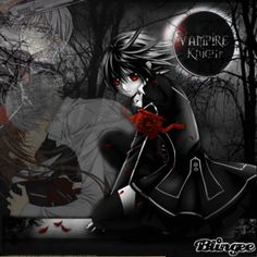 vampire knight funny   ... Pictures zero yuuki vampire knight yuki funny 4934720883458572 jpg