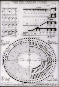 Colosseum, Rome, Italy Plan/Section