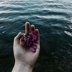 🌺🌊 #tb#cold#flowers#palehand#inspiration#art#nature#water