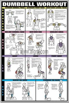 Dumbbell Shoulder, Back, & Leg Workout Poster - Tap the pin if you love super heroes too! Cause guess what? you will LOVE these super hero fitness shirts!