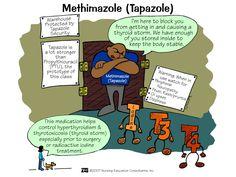 Methimazole (Tapazole) | Nursing Mnemonics and Tips