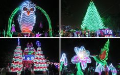 Alumbrados Navideños: we provide a guide to the world-class 2019 Medellín Christmas lights that will have primary lights at 2 locations in Medellín in Christmas Lights, Christmas Tree, Christmas Ornaments, Stuff To Do, Things To Do, Flower Festival, Annual Flowers, Holiday Decor, Top