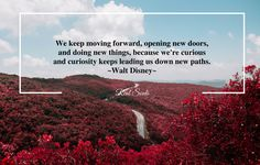 Keep moving forward, open new doors and be curious.