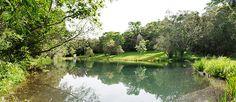 PARANÁ Parque Estadual Lago Azul - Pesquisa Google