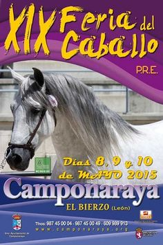 Feria del Caballo en Camponaraya 2015