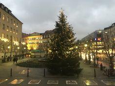 Weihnachtsbaum vor dem Rathausturm Neukölln.