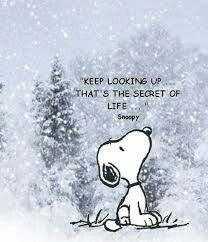 Snoopy says to keep looking up. Snoopy was very wise! Great Quotes, Me Quotes, Motivational Quotes, Inspirational Quotes, Look Up Quotes, Wisdom Quotes, Christmas Quotes Inspirational Beautiful, Inspiring Words, 2015 Quotes