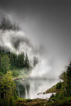 Hidden in the mist.