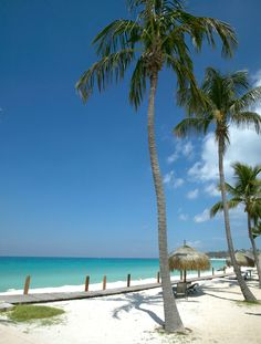 The renowned two-mile-long strip known as Palm Beach Aruba* is home to glamorous high-rise hotels in Aruba and dotted by water sports concessions, piers, beach bars, restaurants and shops.  #Aruba