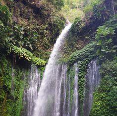 Lombok | Inspiration | Jungle Fever thema Ed Bones
