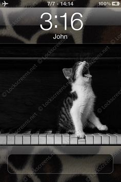 Love the idea of a singing, piano-playing cat!