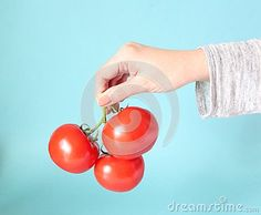 Some fresh tomatoes on blue background