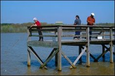 Lake Frierson State Park - Jonesboro, Arkansas =  campsites, picnic, pavilion, playground, trails, boat rentals, pier, visitor center, fishing