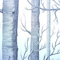 """I want this wallpaper! """"Woods"""" $178 per roll for 56.37 sq. ft. from Walnut Wallpaper"""