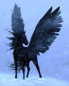 Winged black horse (B3: Break of the Storm) ~Wendy Hamlet