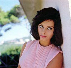 Sophia Loren by Peter Basch, 1963.