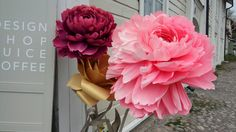 Porvoo Rose, Flowers, Plants, Pink, Plant, Roses, Royal Icing Flowers, Flower, Florals