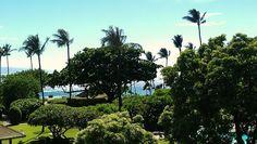Lilikoi Joy: 5 Days on Maui