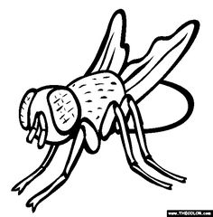 house fly coloring page free house fly online coloring
