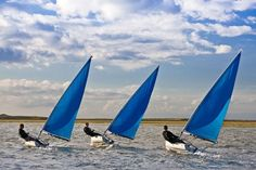 Sailing Terms You Need to Know