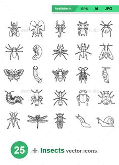 Buy Insects Outlines Vector Icons by naripuru on GraphicRiver. Insects outlines vector icons Attached ZIP folder contains: Bug Tattoo, Tattoo Outline, Stick N Poke Tattoo, Stick And Poke, Doodle Drawings, Doodle Art, Body Art Tattoos, Small Tattoos, Tatoos