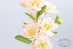 Маттиола, deco clay, handywork, clayflowers, flowers, цветы из полимерной глины, www.buketeria.ru, Matthiola
