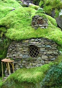 I imagine this little house belongs to a gnomo of the woods, and it's the size of a snail...