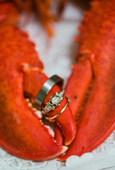 Summer Maine Barn Wedding, Wedding Real Weddings Gallery by WeddingWire Real Weddings 47