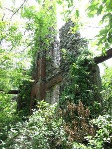 Ramapo Mountain State Forest