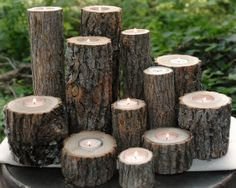 wood tree branch candle holder group