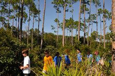 Wildlife Wednesdays: Disney Helps 60,000 Students Explore America's National Parks - How Fantastic!!!