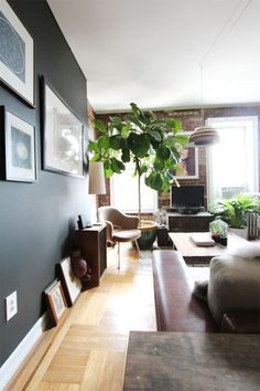 5 Ways To Cozy Up Your Home: A bit of greenery: Usually we think of flowers and plants as adding an illusion of cool to a room but, depending on the kind, they can also add warmth. Of course, evergreen branches and poinsettia plants are expected at this time of year but any plant or flower with dark foliage and warm red or orange flowers has the same effect.