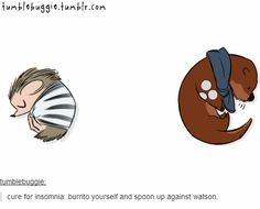 Cure for insomnia: burrito yourself and spoon against Watson. (Super cute gif!)